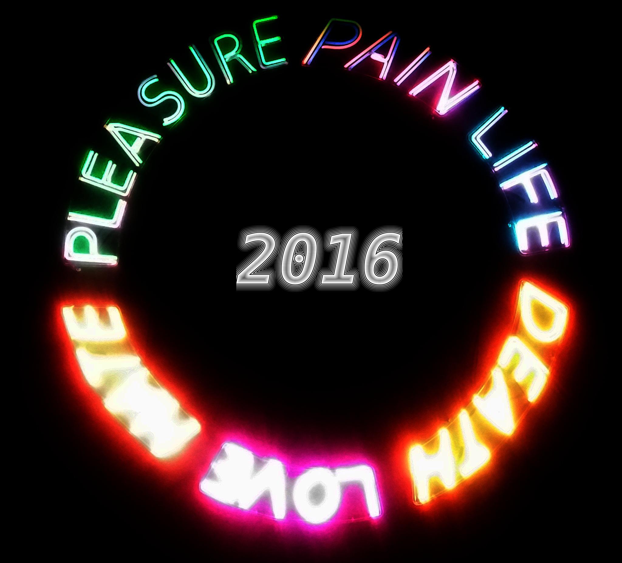 bonne_année_2016
