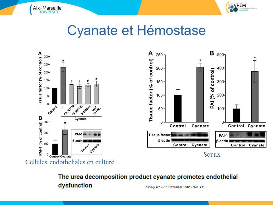toxines-uremiques-et-hemostase_sfndt_2016